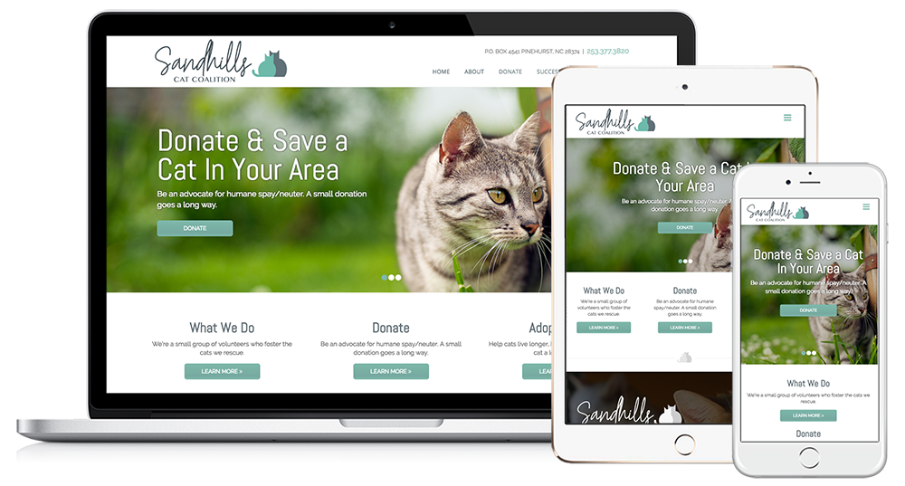 Sandhills Cat Coalition Web Design // Image Design Digital Marketing