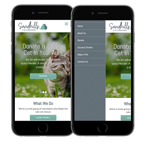 Responsive Website Design in Southern Pines NC